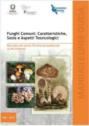 Funghi Comuni: Caratteristiche, Sosia e Aspetti Tossicologici