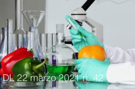 Decreto-Legge 22 marzo 2021 n. 42