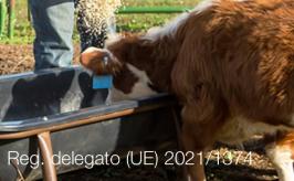 Regolamento delegato (UE) 2021/1374