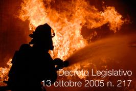 Decreto Legislativo 13 ottobre 2005 n. 217