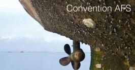 Convenzione AFS