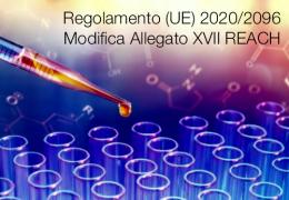 Regolamento (UE) 2020/2096 | Modifica Allegato XVII REACH