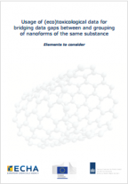 New approach on hazard assessment for nanoforms