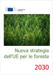 Nuova strategia dell'UE per le foreste per il 2030