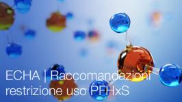 ECHA   Raccomandazioni restrizione uso PFHxS