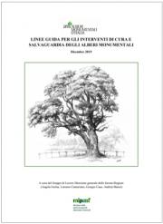Linee guida cura e salvaguardia degli alberi monumentali