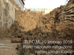 D.P.C.M. 20 febbraio 2019
