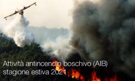 Attività antincendio boschivo (AIB) stagione estiva 2021