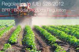 Regolamento (UE) n. 528/2012 Biocidi (BPR)