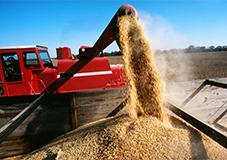 Piano Nazionale Agricoltura: pieghevoli informativi sulla sicurezza