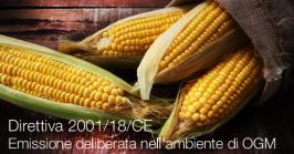 Direttiva 2001/18/CE