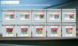 Raccolta Guide Valutazione dei Rischi PMI