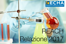 ECHA - Relazione 2017 Regolamento REACH