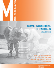 Some Industrial Chemicals: IARC Volume115 (2018)