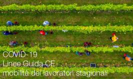 COVID-19: Linee Guida CE mobilità dei lavoratori stagionali