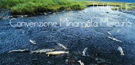 L'UE ratifica la convenzione di Minamata sul mercurio