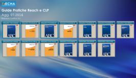 Guide pratiche REACH e CLP: Aggiornamento 07.2014