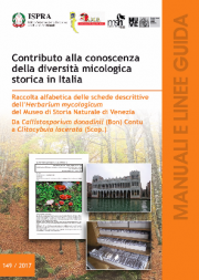 Contributo conoscenza diversità micologica storica in Italia