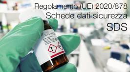 Regolamento (UE) 2020/878