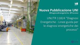 UNI/TR 11824:2021 - Linee guida per le diagnosi energetiche dei processi