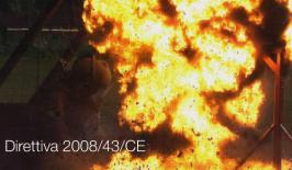 Direttiva 2008/43/CE