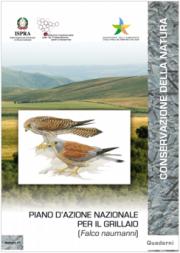 Piano d'azione nazionale per il Grillaio (Falco naumanni)
