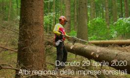 Decreto 29 aprile 2020 | Albi regionali delle imprese forestali