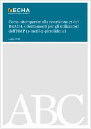 Guida per gli utilizzatori dell'NMP (1-metil-2-pirrolidone) ECHA