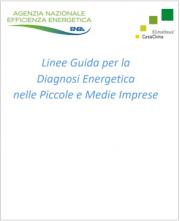 Linee Guida Diagnosi Energetica nelle PMI | ENEA 2020