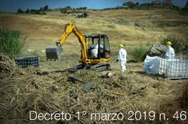 Decreto 1° marzo 2019 n. 46