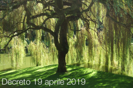 Decreto 19 aprile 2019