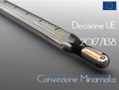 Decisione (UE) 2017/1138