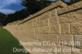 Sentenza CC n. 119 2020
