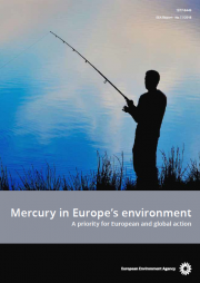 Mercury in Europe's environment