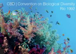 CBD - Convenzione di Rio de Janeiro