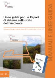 Linee guida per un report di sistema sullo stato dell'ambiente
