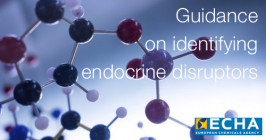 Guidance on identifying endocrine disruptors
