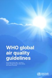 Linee guida globali Oms sulla qualità dell'aria 2021