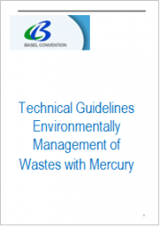 Technical Guidelines Environmentally Management of Wastes with Mercury
