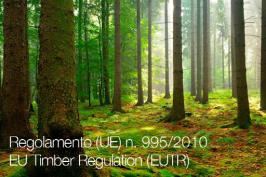 Regolamento (UE) n. 995/2010
