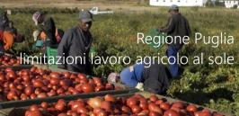 Ordinanza Regione Puglia n. 182/2021: limitazioni lavoro agricolo al sole