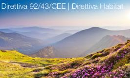 Direttiva 92/43/CEE   Direttiva Habitat