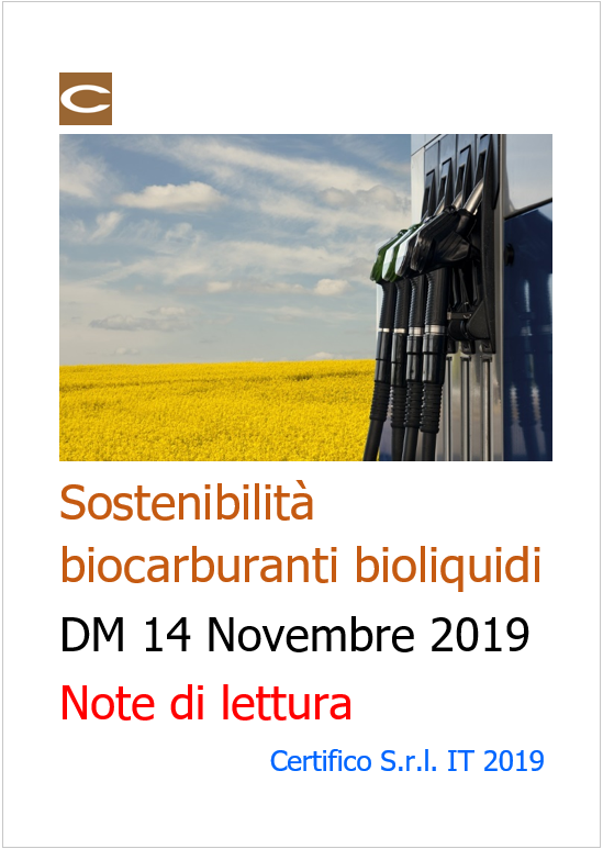 Cover Sostenibilit  biocarburanti Bioliquidi