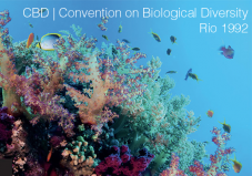 Convention on Biological Diversity CBD
